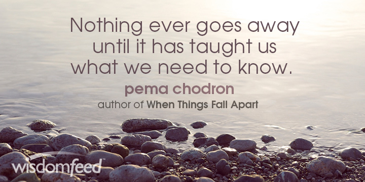 Pema Chodron Nothing Ever Goes Away Quote Meme