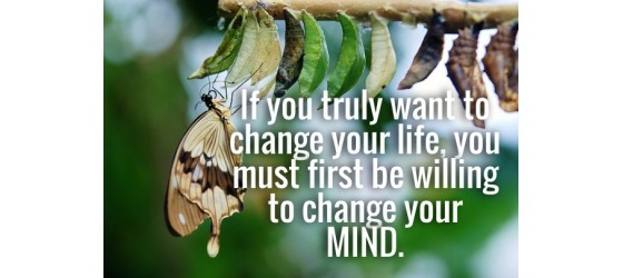 Are You Willing to Change Your Mind?