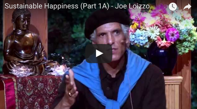 Sustainable Happiness— Joe Loizzo
