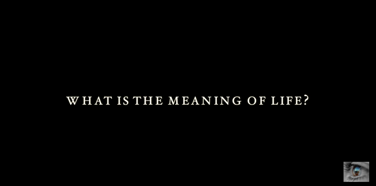 What Is The Meaning of Life – Neil deGrasse Tyson