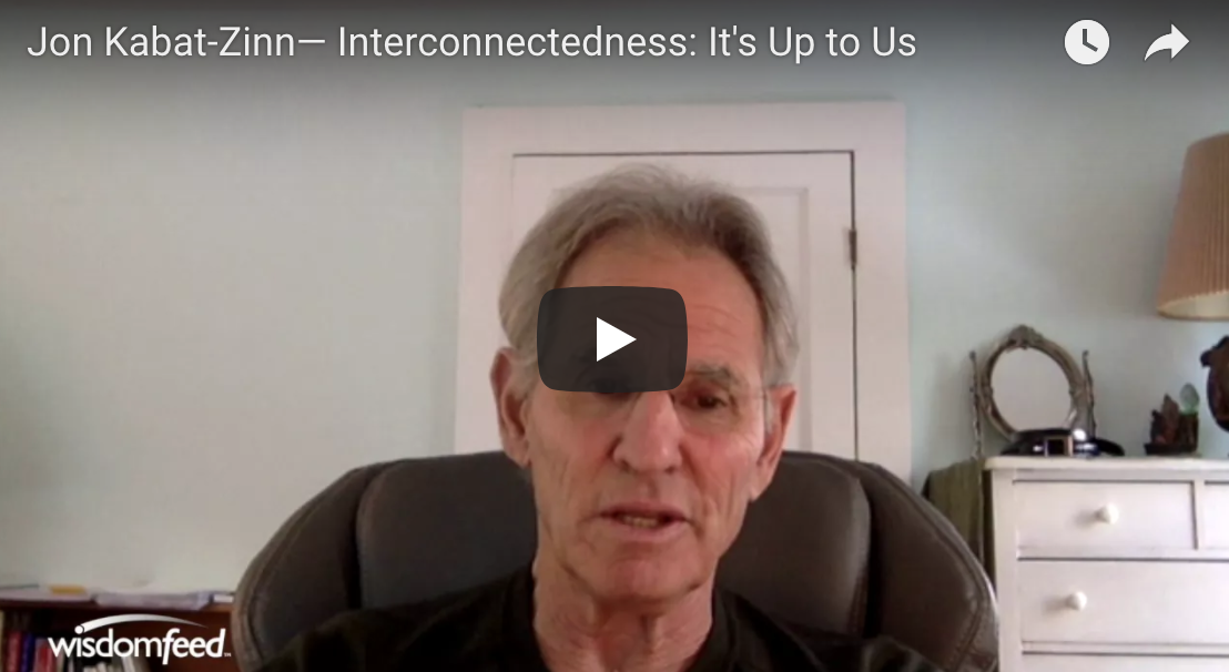 Jon Kabat-Zinn— Interconnectedness: It's Up to Us