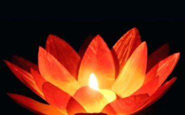 lotus-flower-floating-candles-silk-lotus-flower-wishing-lamp-floating-water-candle-light-birthday-wedding-party-decor-lotus-flower-floating-candle-holder