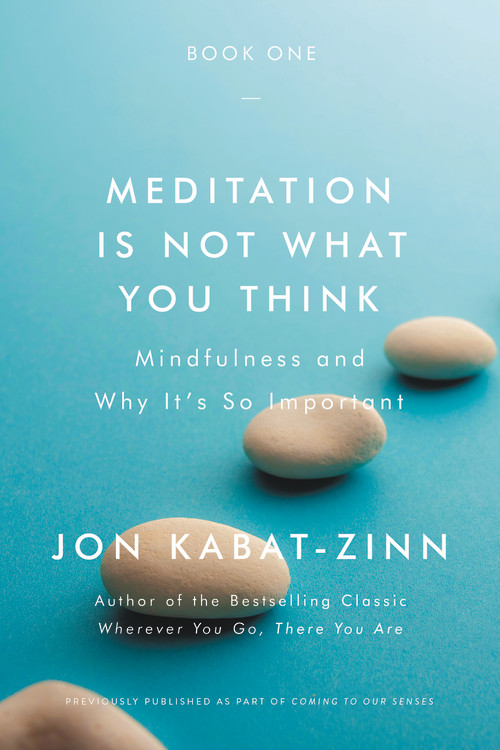 Jon Kabat-Zinn Meditation is Not What You Think – book excerpt